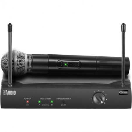 Microfono wireless ProAudio PW210
